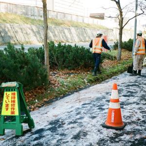 側溝の落葉の清掃作業