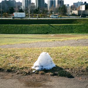 初雪の可愛い痕跡