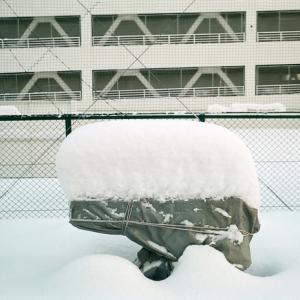 少し例年に近づいた雪