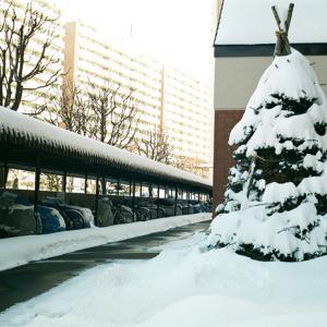 マンション玄関周りの雪と屋内リハビリ散歩休憩所