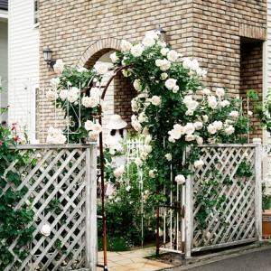 白いバラのアーチと洋風建築