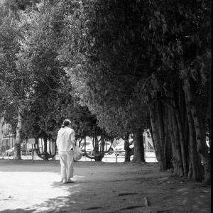 孫を散歩させる老婦人とサイゼリヤの感染対策