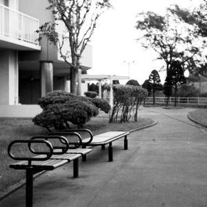 マンション脇のベンチと公園のベンチ