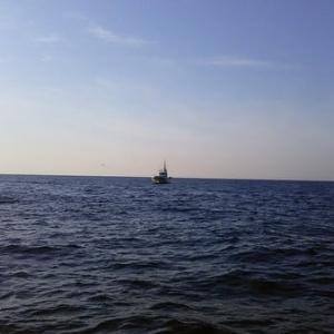 東京湾発ヤリイカ行ってきました