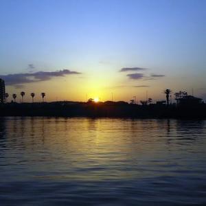 相模湾のヤリイカへ行ってきました