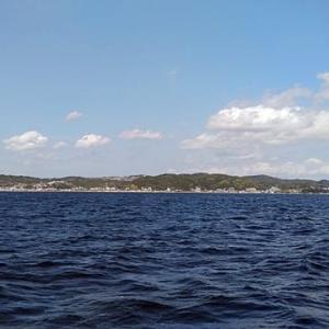 相模湾のマルイカ行ってきました