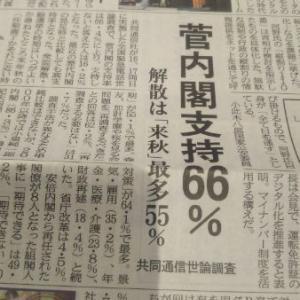 菅内閣  支持率66