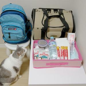 避難時の猫用品は三日分
