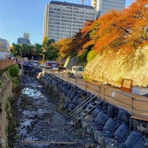 駿府城 外堀に 水辺デッキ設置工事が進行中