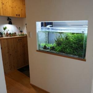 玄関の水槽取付けの画像が送られてきました。