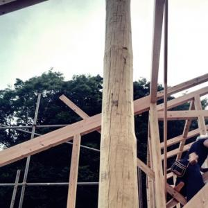 コートハウスの家が上棟しました。