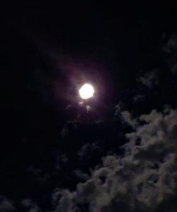 立待月の迂闊