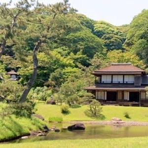 茶遊記-お多福茶会-@日本の夏じたく