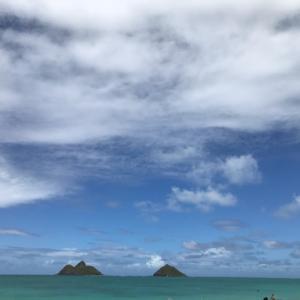 ハワイより青空をお届けします♪