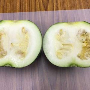 ズッキーニの次の果実はどれになる?