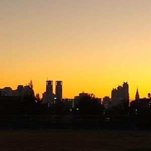 日の出を見る