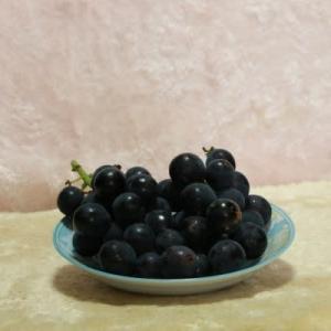 ブドウのお土産