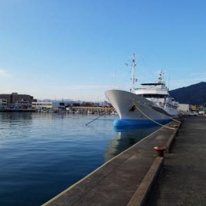 日本のマグロの水揚げ量の3分1が焼津漁港 ...m(_ _)m