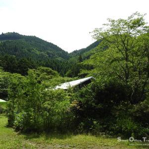 初夏の山小屋2020