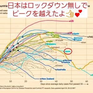 予測通り!新型コロナ・日本はロックダウン無しでピークを越えた♪
