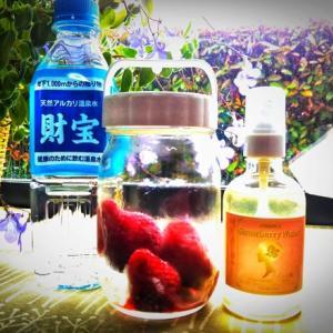 リッチ脳・ストロベリーウォーター+無農薬イチゴ酵母水作成キット、令和5月1日より限定発売