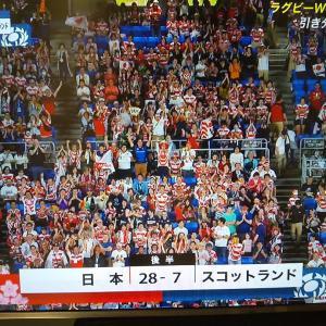 おめでとう❗️ラグビー日本代表