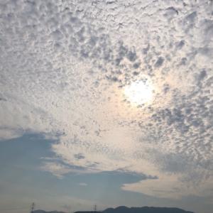 神戸の明日は雨? 緊急事態宣言&まん防の夏休み…