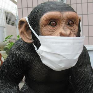 コロナ関係で暑くてもマスクしている人だらけですが!こんなキャラもマスクをしているよ。
