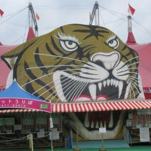 世界3大サーカスの一つ「木下サーカス」12月14日迄、立川立飛で公演されています。