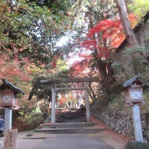 戦国時代の戦場跡!唐沢山城跡!関東七名城のひとつで、国指定史跡!