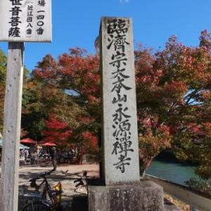 紅葉の永源寺へ