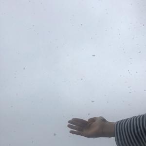 東京は雪が積もってます☆自宅で皆さん何をしていますか?色んなこと考えさせられます