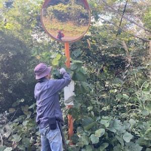 林道の整備