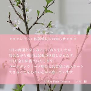 レッスン休講延長のお知らせ