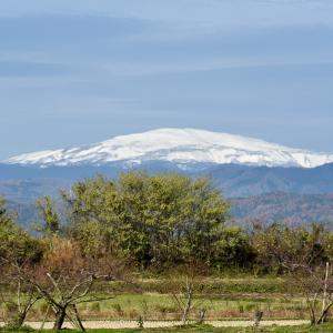 月山の冠雪