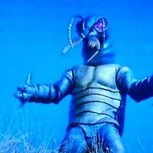 ガランダー改造人間第4号~ハンミョウ獣人