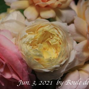 一番花の薔薇アレンジ