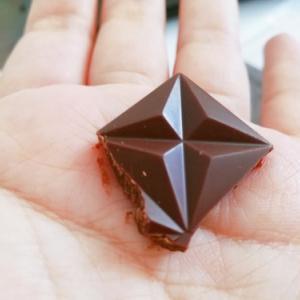 東京で栽培されたカカオを使ったチョコレート『TOKYO CACAO』