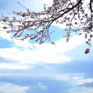 志村けんさんの訃報がもたらす影響
