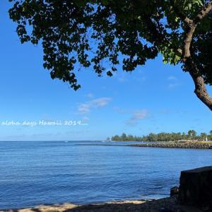 2019年末ハワイ:ノースショアでカヤック体験