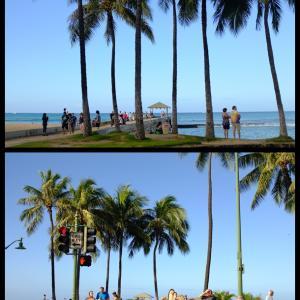 2019年末ハワイ:ぎりぎりワイキキからクイーンズビーチ