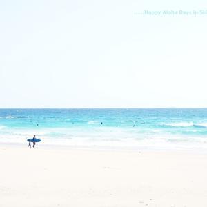 ワンコと一緒:多々戸浜