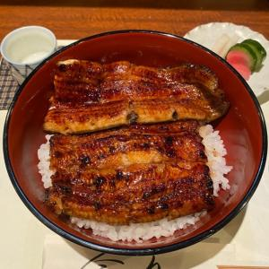 三田市「今文」の鰻!