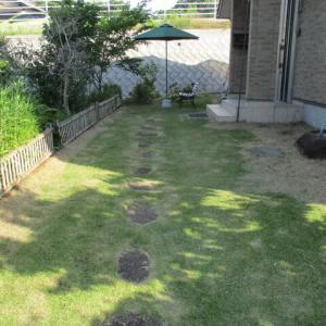芝生刈り・キュウリの定植