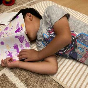 【小学1年生】ついに1人読みスイッチオン!最近息子が読んでいる本