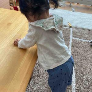 【9ヶ月女児】2020年秋服・着画あれこれ