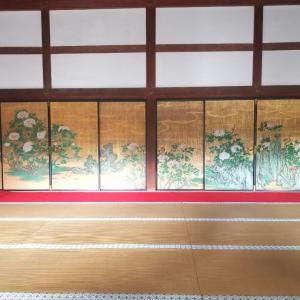 京都*大覚寺とフルーツパーラーヤオイソの美しいフルーツサンド