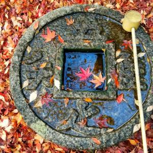 京都*自家焙煎珈琲のcaffe Verdiと金福寺の紅葉