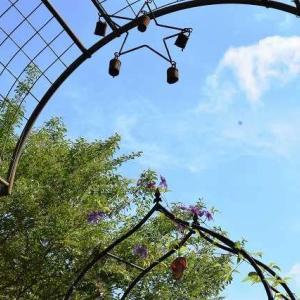 西洋ニンジンボクはツンツンと風はさらさら桂の木はころん♪