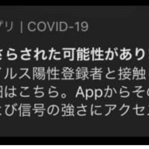 COVID-19にさらされた可能性がありますとiPhoneで表示。cocoaでは接触なし